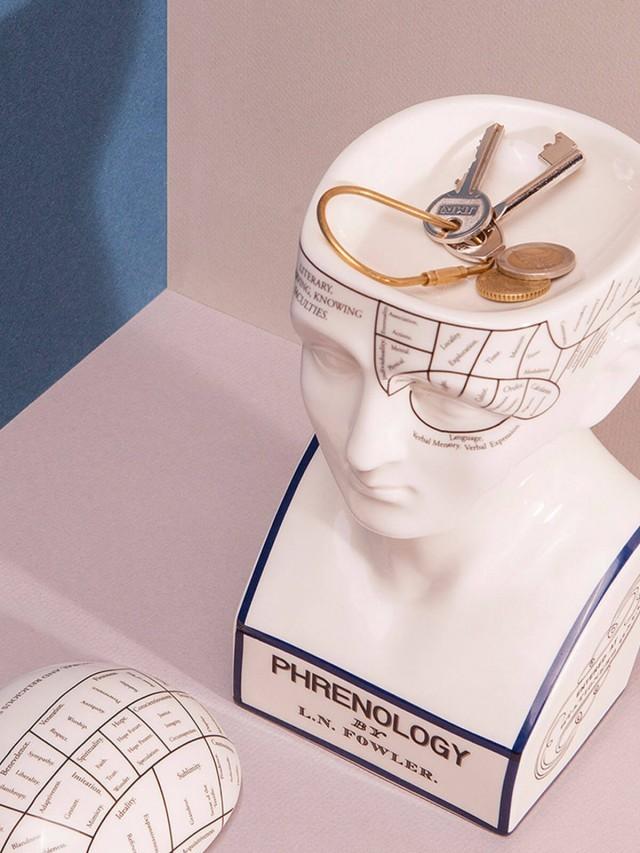 DOIY Lorenzo N. Fowler 大腦思考家 - 收納盒