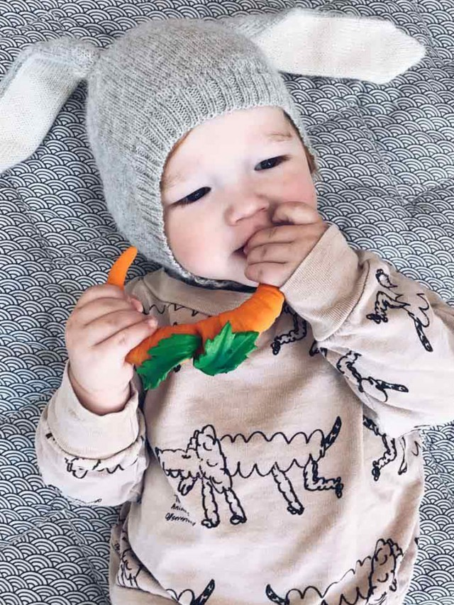 OLI & CAROL 健康蔬果系列 - 胡蘿蔔