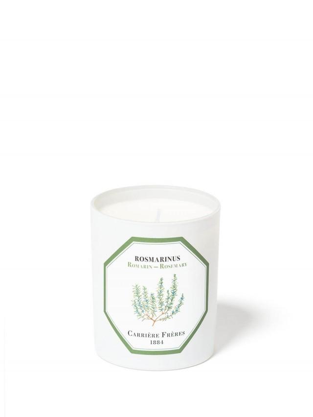 CARRIÈRE FRÈRES 天然香氛蠟燭 迷迭香 Rosemary 185g