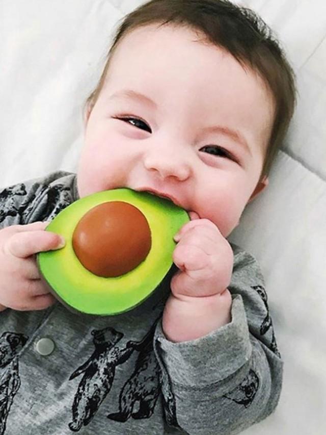 OLI & CAROL 健康蔬果系列 - 酪梨
